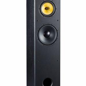 Davis Acoustics Dhavani MK2 è un diffusore da pavimento nero aperto